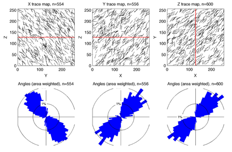 Output from the stereological method to quantify 3D fracture patterns from 2D images