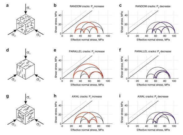 Exploring the influence of crack patterns on the poroelastic response to changes in pore fluid pressure